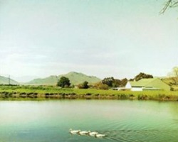 Rietspruit Country Cottages